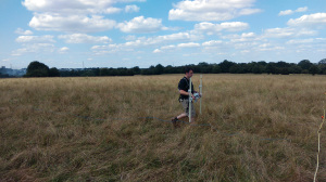 Elliot surveying the possible location of the siege camp on Basing Common using a magnetometer, with Basing House within the trees in the background